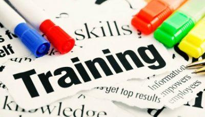 training your winning team