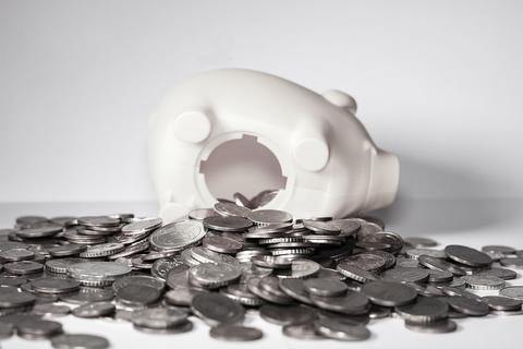 NAR Members: $30 Annual Increase